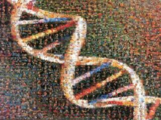 DNA The Code of Life