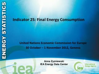 Indicator 25: Final Energy Consumption