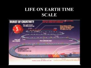 LIFE ON EARTH TIME SCALE