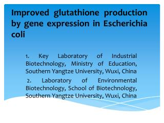 Improved glutathione  production by  gene  expression in  Escherichia coli