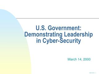U.S. Government: Demonstrating Leadership in Cyber-Security