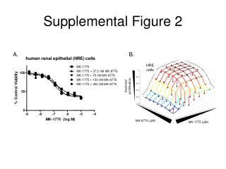 Supplemental Figure 2