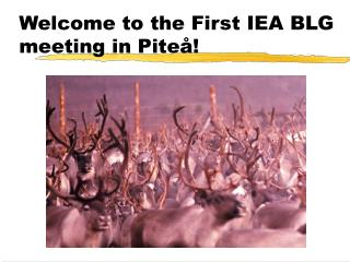 Welcome to the First IEA BLG meeting in Piteå!