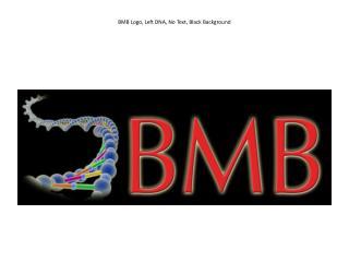 BMB Logo, Left DNA, No Text, Black Background
