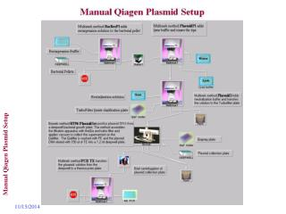 Manual Qiagen Plasmid Setup