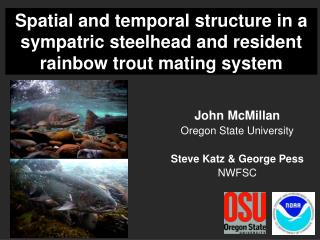 Spatial and temporal structure in a sympatric steelhead and resident rainbow trout mating system