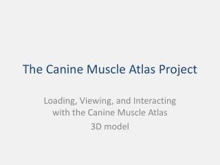 The Canine Muscle Atlas Project