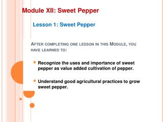 Module XII: Sweet Pepper
