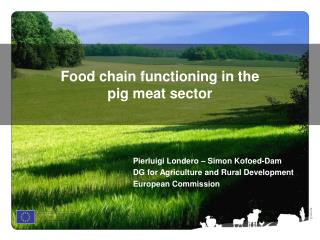 Food chain functioning in the  pig meat sector