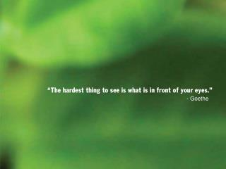 """The hardest thing to see is what is in front of your eyes."""