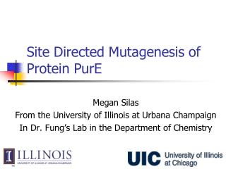 Site Directed Mutagenesis of Protein PurE