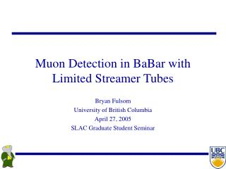 Muon Detection in BaBar with Limited Streamer Tubes