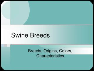 Swine Breeds