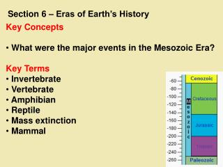 Key Concepts  What were the major events in the Mesozoic Era? Key Terms  Invertebrate  Vertebrate