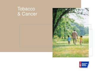 Tobacco & Cancer