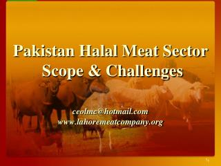 Pakistan Halal Meat Sector  Scope & Challenges  ceolmc@hotmail lahoremeatcompany