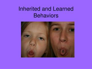 Inherited and Learned Behaviors