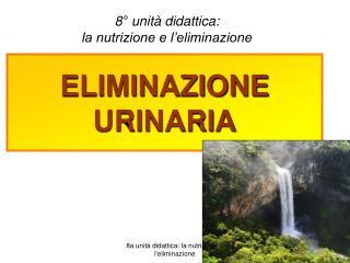 ELIMINAZIONE URINARIA