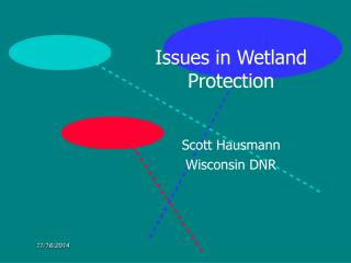 Issues in Wetland Protection