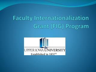 Faculty Internationalization Grant (FIG) Program