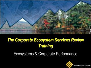 The Corporate Ecosystem Services Review  Training  Ecosystems & Corporate Performance