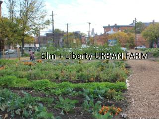 Elm + Liberty URBAN FARM