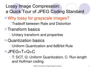 Lossy Image Compression: a Quick Tour of JPEG Coding Standard
