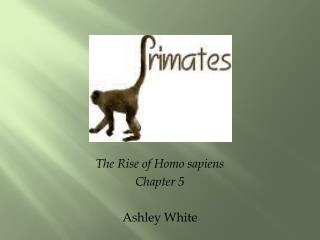 The Rise of Homo sapiens Chapter 5 Ashley White