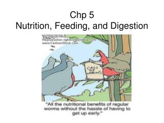 Chp 5 Nutrition, Feeding, and Digestion