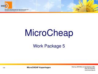 MicroCheap Work Package 5