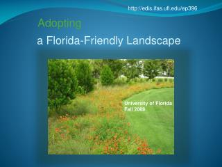 a Florida-Friendly Landscape