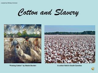 Cotton and Slavery