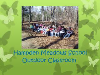 Hampden Meadows School