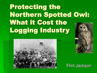 Protecting the Northern Spotted Owl: What it Cost the Logging Industry