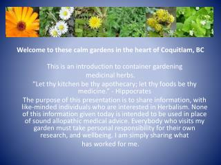 Welcome  to these calm gardens in the heart of Coquitlam, BC