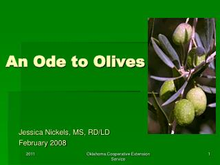 An Ode to Olives