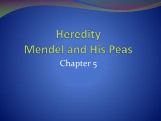 Heredity  Mendel and His Peas