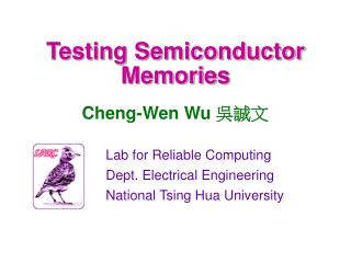 Testing Semiconductor Memories