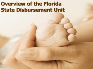 Overview of the Florida State Disbursement Unit