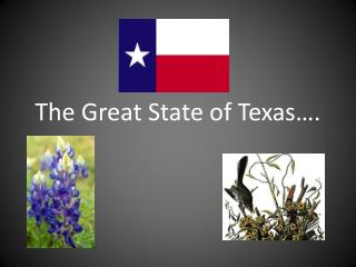The Great State of Texas….
