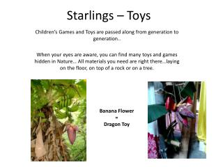 Starlings – Toys
