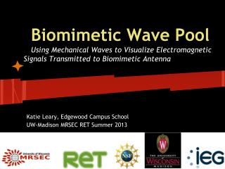 Biomimetic Wave Pool