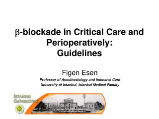 b -blockade in Critical Care and Perioperatively: Guidelines