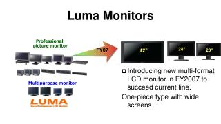 Luma Monitors