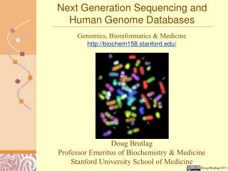 Next Generation Sequencing and Human Genome Databases