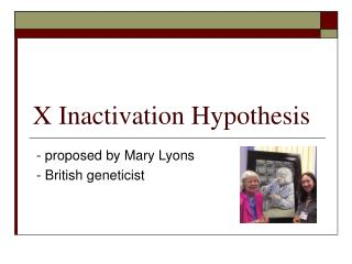 X Inactivation Hypothesis