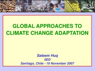GLOBAL APPROACHES TO CLIMATE CHANGE ADAPTATION Saleem Huq IIED Santiago, Chile - 19 November 2007