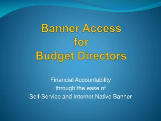 Banner Access for Budget Directors