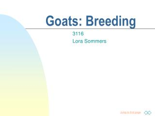 Goats: Breeding