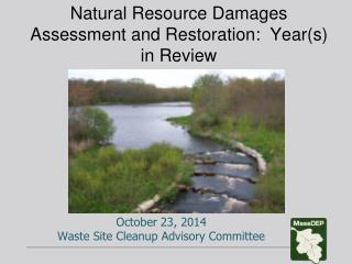 Natural Resource Damages Assessment and Restoration:  Year(s) in Review